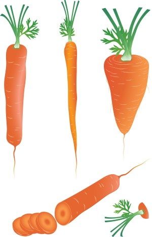 Carrots contain vitamin B6